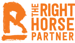 The Right Horse